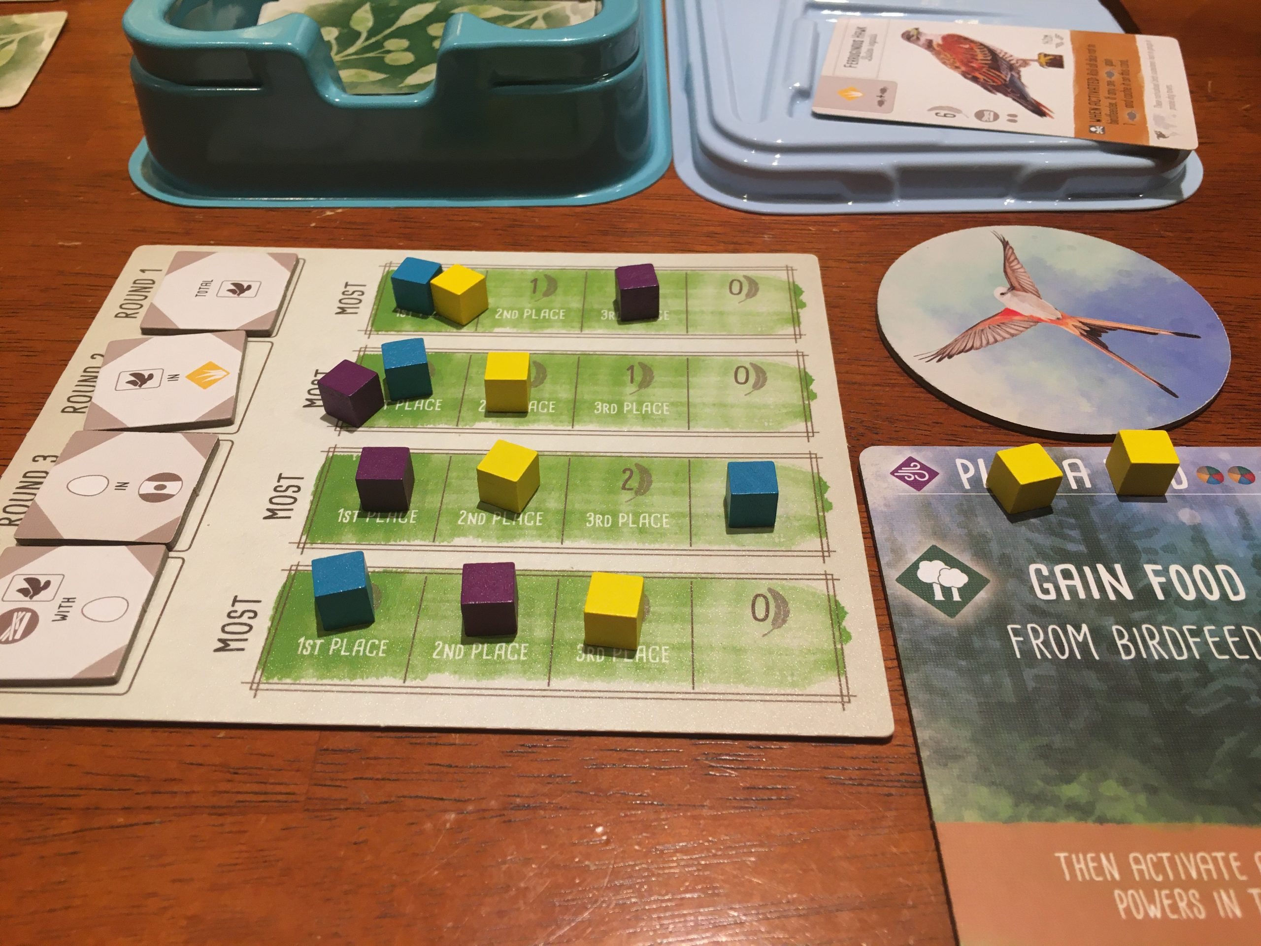 Wingspan game details with wooden action cubes