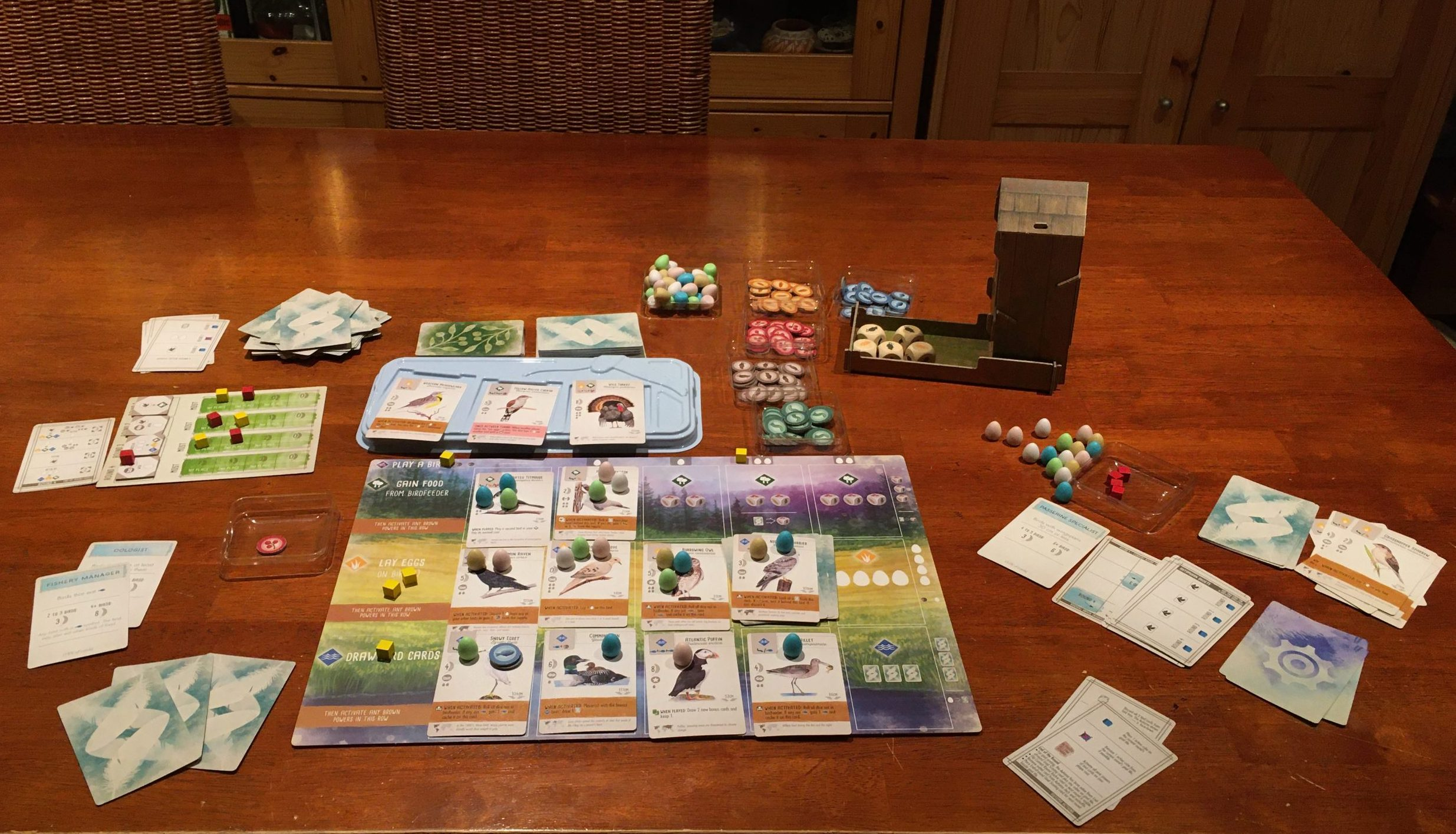 Wingspan single player game version Automa in play